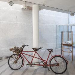 Vi flyver længere end nogensinde (We fly farther than ever), Red, old, unisex tandem bike, bird's tests. 239 x 105 x 50 cm.